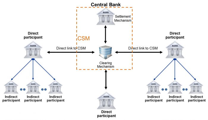 Picture of Direct and Indirect participants to a CSM